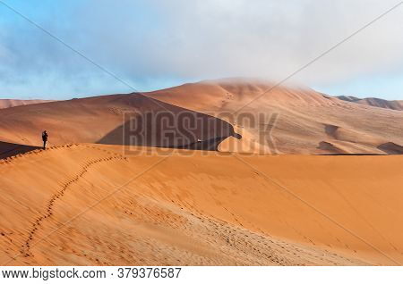 View From The Sickle Shaped Sand Dune Next To Sossusvlei Towards The North. Sand Dunes And A Tourist