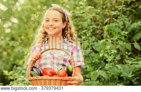 Some Food. Harvest Vitamin. Spring Market Garden. Healthy Food For Children. Happy Little Farmer. Au