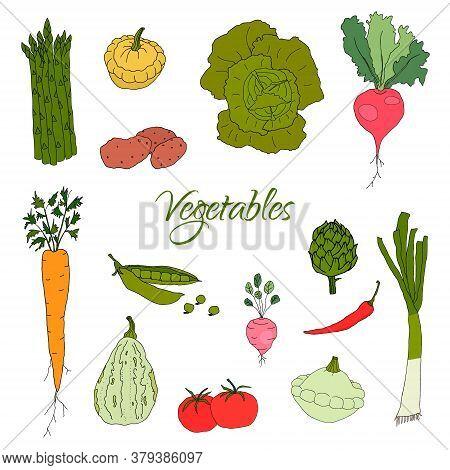 Hand Drawn Doodle Vegetables Icons Isolated Set. Vector Illustration. Fresh Organic Eco Food, Vegan