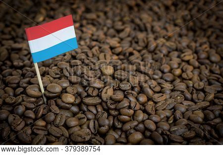 Luxembourg Flag Sticking In Roasted Coffee Beans. The Concept Of Export And Import Of Coffee