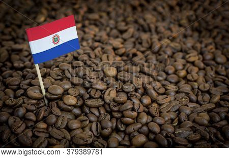 Paraguay Flag Sticking In Roasted Coffee Beans. The Concept Of Export And Import Of Coffee