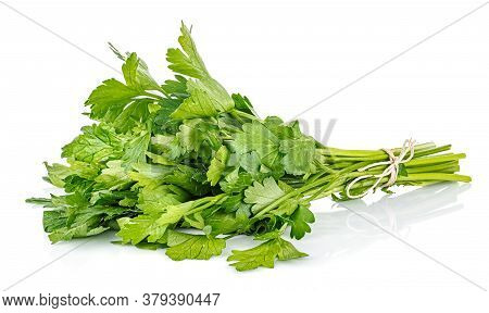 Lying Bunch Of Parsley Tied With Brown Twine Isolated On White Background