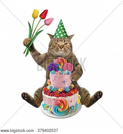 The Beige Cat In A Birthday Hat With A Bouquet Of Flowers Is Sitting Near A Two Tiered Cake. White B