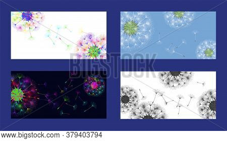 Dandelion Background For Your Design. Set From Different Four Backgrounds. The Wind Blows Dandelion
