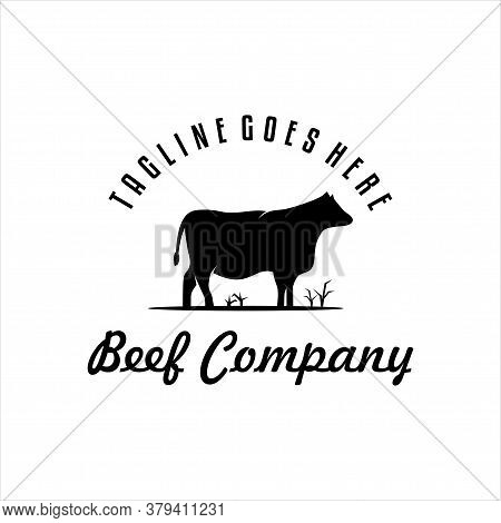 Retro Vintage Cattle Angus Livestock Beef Emblem Label Logo Design Vector