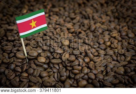 Suriname Flag Sticking In Roasted Coffee Beans. The Concept Of Export And Import Of Coffee