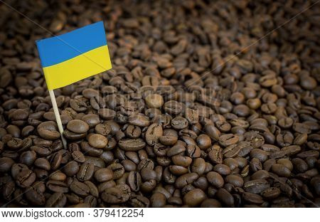 Ukraine Flag Sticking In Roasted Coffee Beans. The Concept Of Export And Import Of Coffee