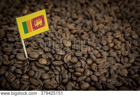Sri Lanka Flag Sticking In Roasted Coffee Beans. The Concept Of Export And Import Of Coffee