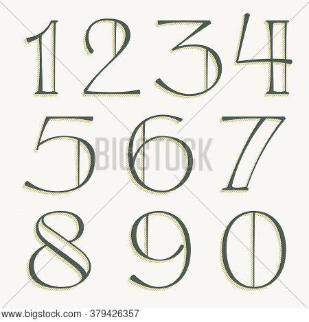 Elegant Alphabet Numbers Serif Set. Classic Thin Pen Lettering With Shadow Lines. Luxury Vector Illu