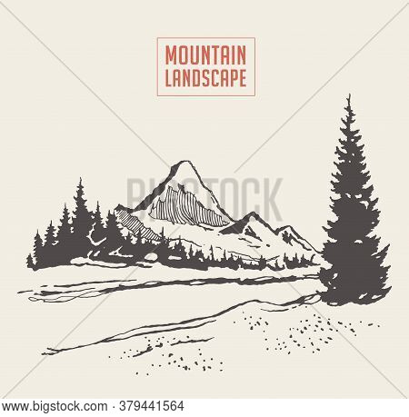 Two Mountains Spruce Forest River Vector Sketch