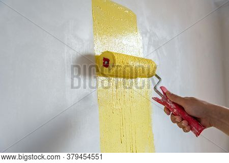 Decorator's Hand Painting Wall With Roller Indoor.
