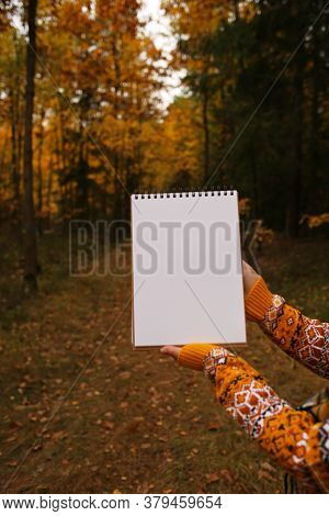 Autumn Mock Up.white Blank Notebook In The Hands Of A Girl On A Dark Yellow Autumn Forest Blurred Ba