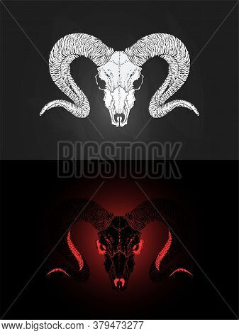 Vector Illustration With Two Variants Of Hand Drawn Ram Skull On Dark Background. In Realistic Style