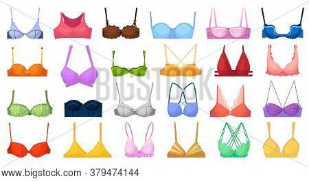 Fashion Bra. Bustier Different Type Illustration. Vector Woman Fabric Lingerie. Fashion Textile Bra