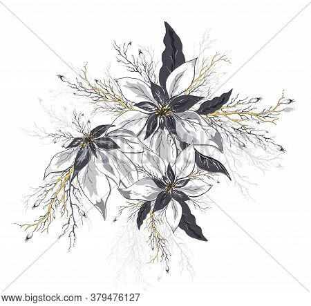 Flower Of Poinsettia And Leaves Isolated On White Background. Realistic Hand-drawn Doodles. Modern S