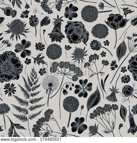 Seamless Pattern With Hand Drawn Stylized Shepherds Purse, Heather, Fern, Wild Garlic, Clover, Globe