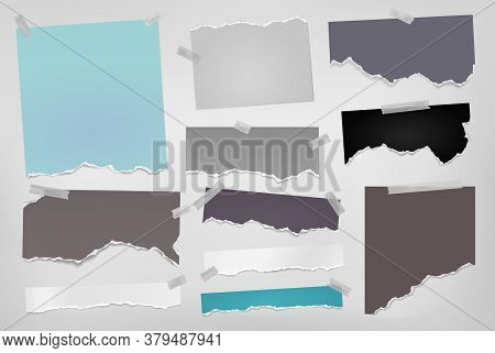 Torn Of Colorful Note, Notebook Paper Strips And Pieces Stuck With Sticky Tape On White Background.
