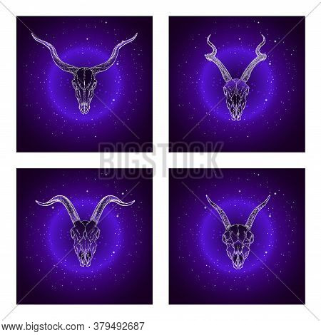 Vector Set Of Four Illustrations With Hand Drawn Skulls Antelopes And Goats On Purple Abstract Backg