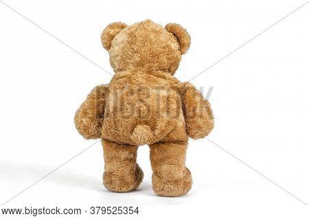 Teddy Bear Standing Walking On White Background.
