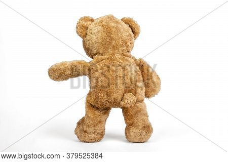 Teddy Bear Standing Dancing On White Background