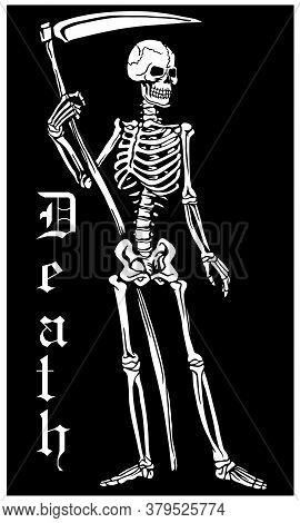 Skeleton-0002.eps
