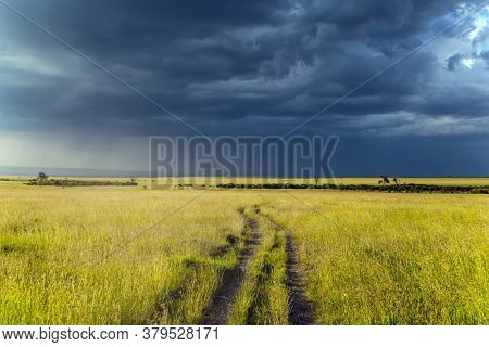 The vast expanses of the Horn of Africa. Storm clouds over a grassy savannah. The famous Masai Mara Reserve in Kenya. The concept of ecological, exotic, extreme and photo tourism