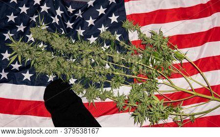.marijuana Lying On The Flag Of America. America's Marijuana Renaissance Culture