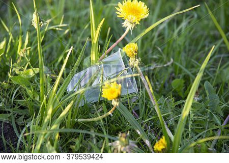 A Plastic Disposable Cup Was Thrown Into The Grass. Pollution Of Nature. Environmental Protection. T
