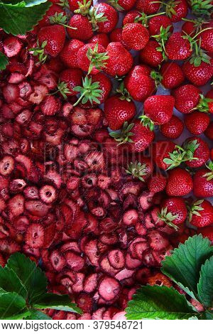 A Large Number Of Dried Strawberry Slices And Whole Fresh Berries. Natural Product. Dried Strawberry