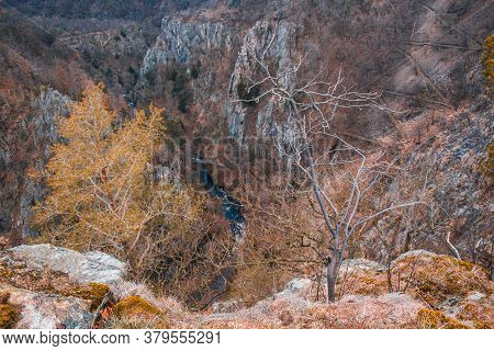 Wild Bodetal From Rosstrappe Viewpoint At Harz Mountains National Park In Germany