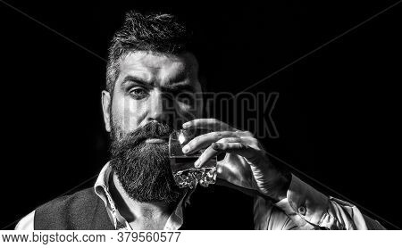 Bearded Gentleman Drink Cognac. Sipping Finest Whiskey. Portrait Of Man With Thick Beard. Macho Drin