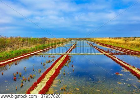 Salt field, salt pans- Artisanal salt in France