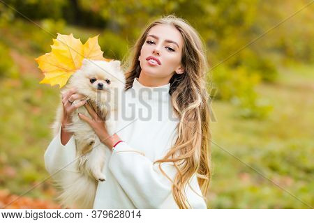 Autumn Time With Pets. Woman With Doggy On Fall Maple Leaf Outdoors. Emotional Support