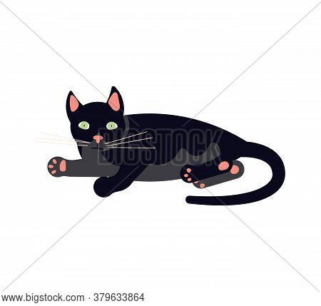 The Black Cat Lies On Its Side And Purrs. Square Card With Funny Kitten In Flat Design. Happy Cats D