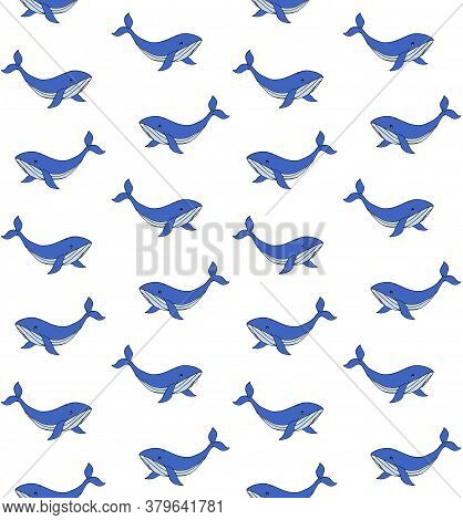 Vector Seamless Pattern Of Blue Hand Drawn Doodle Sketch Whale Isolated On White Background