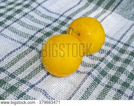 Yellow Plum Fruit On The Kitchen Table. Food Photo. Harvesting The Yellow Plum. Orchard. Vegetarian
