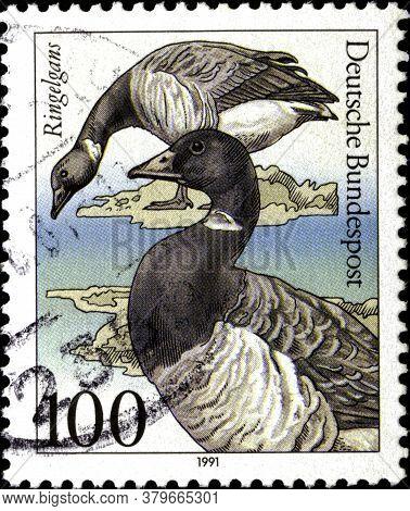 02 11 2020 Divnoe Stavropol Territory Russia The Postage Stamp Germany 1991 Animal Welfare: Endanger