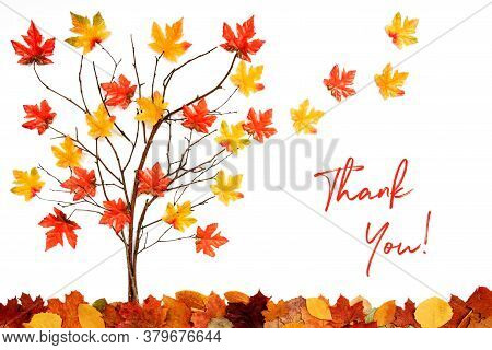 Tree With Colorful Leaf Decoration, Leaves Flying Away, Text Thank You