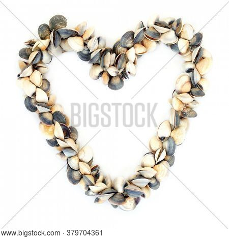 Heart shaped wreath made of clam seashells on white background with copy space. Romantic symbol.
