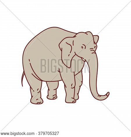 Cartoon Grey Elephant With Long Trunk Standing Isolated On White Background.