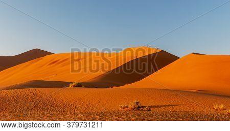 Arid Dead Sunrise Landscape, Hidden Dead Vlei In Namib Desert, Dune With Morning Sun, Namibia, Afric