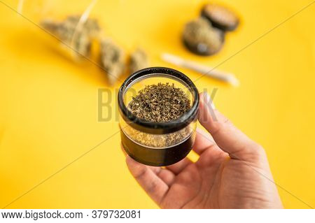 Cannabis Nature Bud. Indica Medical Health. The Pot Leaves On Buds. Marijuana Weed Bud And Grinder