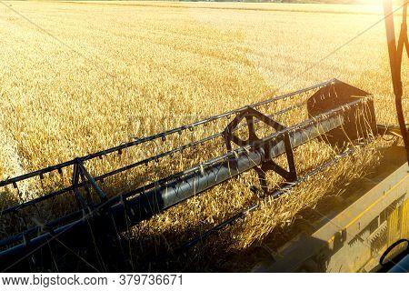 Combine Harvester View Through The Combine Window.