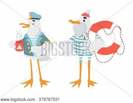 Vector Sailor Seagulls Set. Captain Bird In Jacket Drinks Coffee. Seagull With The Lifebuoy In Strip