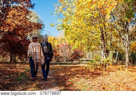 Fall Activities. Senior Couple Walking In Autumn Park. Middle-aged Man And Woman Hugging And Chillin