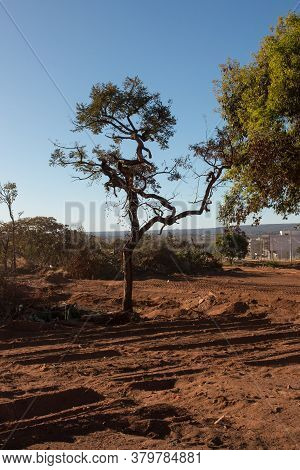 Brasilia, Brazil August 5 2020: Land That Local Indigenous People Were Living On That Is Being Clear