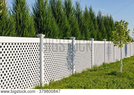 White Vinyl Fence In A Cottage Village. Several Panels Are Connected By Columns. Tall Thuja Bushes B