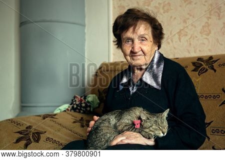 Portrait an elderly woman with cat in her home.
