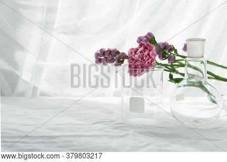 Purple Pink Natural Flower With Science Round Flask Beaker In White Soft Light Biotechnology Cosmeti