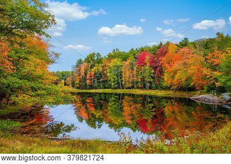 Colorful Foliage Tree Reflections In Calm Pond Water On A Beautiful Autumn Day In New England